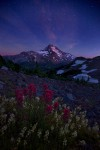 Twilight, Oregon, Mount Jefferson, Wildflowers
