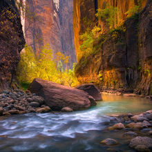 Zion, Utah, Virgin, Narrows, Canyon, Autumn