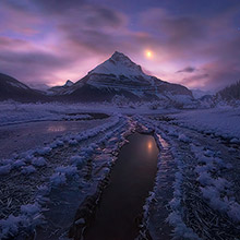 hoar frost, frost, ice, reflection, canadian rockies, canada, jasper