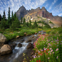 Three Fingered Jack, peak, clouds, stream, wildflowers, mountain