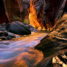 Narrows, Zion, reflected light, walls