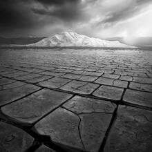 Desert Art (2009)