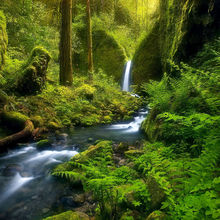 enchanting, waterfall, stream, wild, remote, oregon, columbia gorge