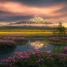 Three Sisters, Bachelor, Wildflowers, spring, reflection, sunset, sparks