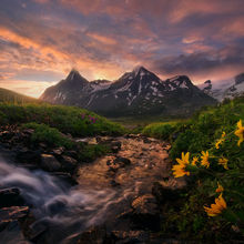 Sunrise, morning, boundary range, meadows, alaska, british columbia, Summer