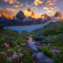 Of Glaciers and Garden
