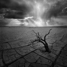 rainstorm, powerful, playa, desert, death valley, sagebrush