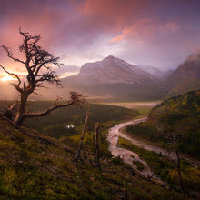 Glacier, National Park, Sunrise, Autumn, Clearing