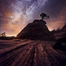 Zion, Checkerboard, Milky Way, Tree, Lone, Night, Surreal
