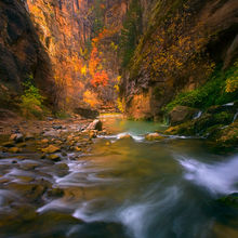 backpacking, zion, virgin, big spring, autumn