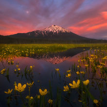 Mount Bachelor, Oregon, Wetland, Spring, Flowers, Moon, Sunset, Twilight