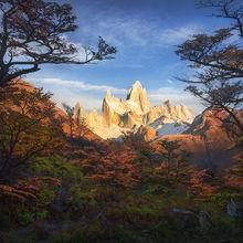 Fitz Roy,  Argentina, Lena, autumn, forest