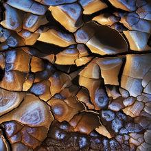 Playa, Great Basin, Alkaline, mud cracks, cracks, desert