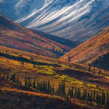 Ogilvie, Yukon, Arctic, Fall