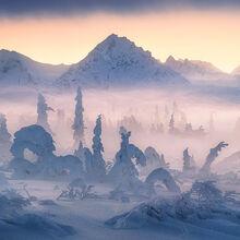 Winter Twilight