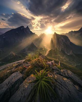 Desert of the Mountains