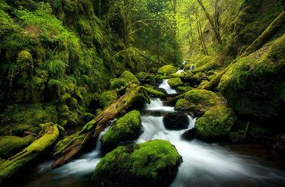 Green Canyon Cascades (2005)