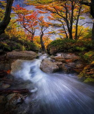 Patagonian Autumn (2013)