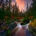 Autumn Show, Rogue River, Oregon