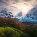 Moss, autumn, mountains, Chile, fiords, rainforest, Patagonia, glacier