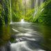 Downpour - Eagle Creek, Oregon