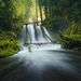 Rain Forest, washington, cascades, waterfall
