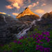 waterfalls, alaska, wildflowers, summer, sunset, coast mountains