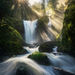 Sun beams, beams, light, rays, waterfall, rainforest, green, spring, Washington, cascades, falls creek