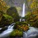 November Rain, Elowah Falls, Oregon
