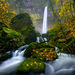 Oregon, Elowah, Falls, Waterfall, Rain, Fall
