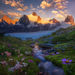 Glacier, mountains, summer, sunset, wildflowers, cascades, british columbia, alaska