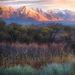 Sierra, Great Basin, sunrise