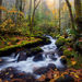 Fog, Cascades, stream, autumn, oregon, gorge