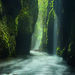 Rain Forest, Unique, Canyon, Oregon, Waterfalls, Rains, Misty, Oneonta