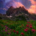 The Last Moment - Jack Park, Oregon