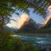 New Zealand, ferns, tutuko, mountain, glacial