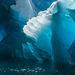 Alaska, iceberg