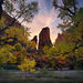 Zion, Utah, Sunrise, Autumn
