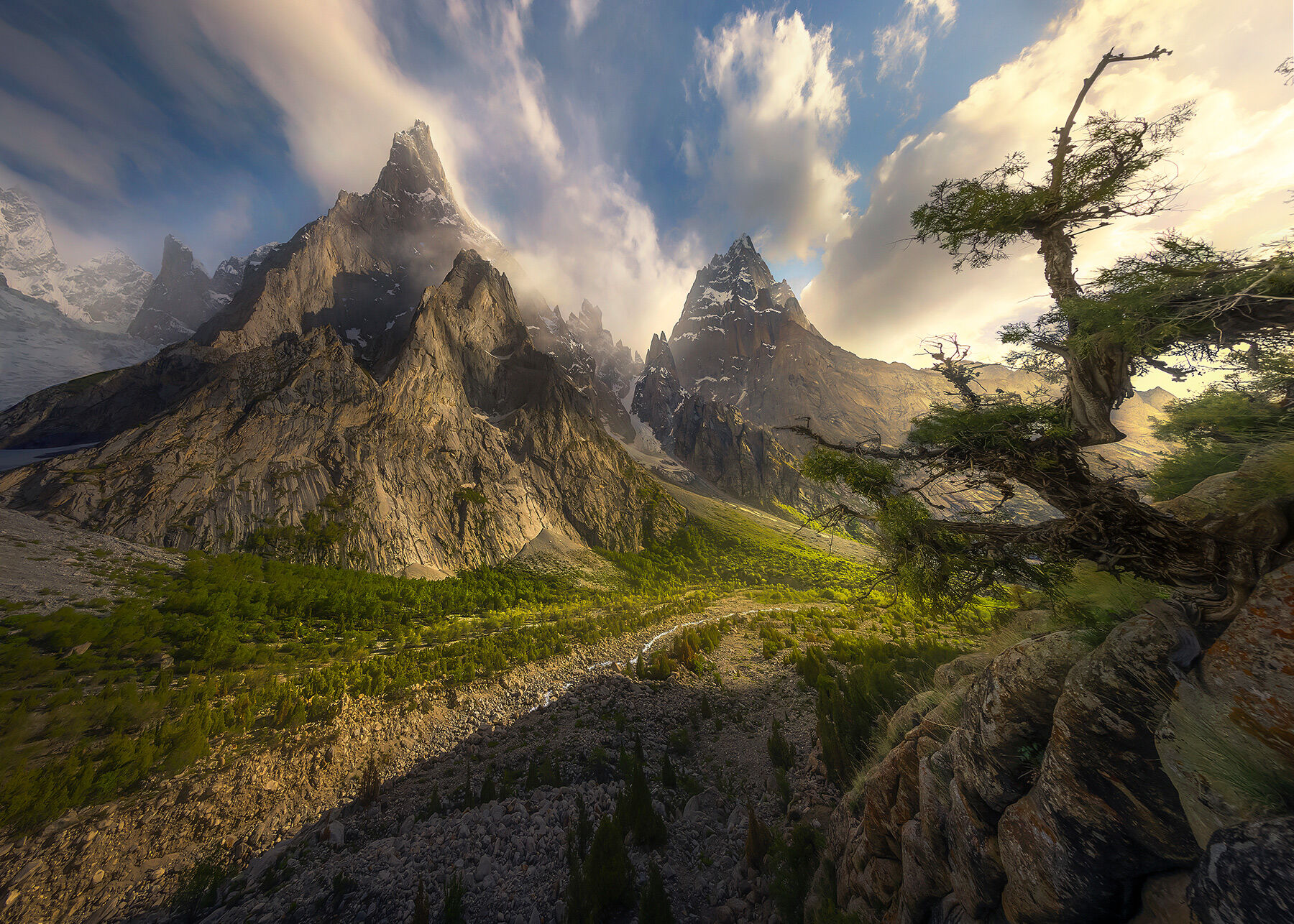 A gnarled, wind-shaped tree hangs on to the edge of a cliff overlooking some of the largest and most impressive peaks I have...