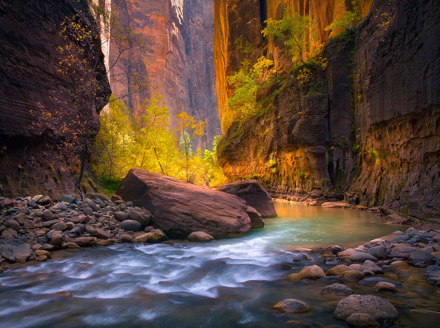 Zion, Utah, Virgin, Narrows, Canyon, Autumn, photo