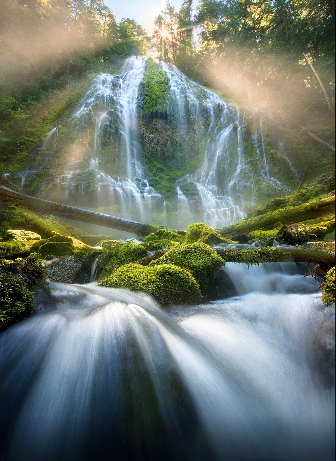 Mist beams down through the forest surrounding Oregon's magnificent Proxy Falls, in the Cascade Range.