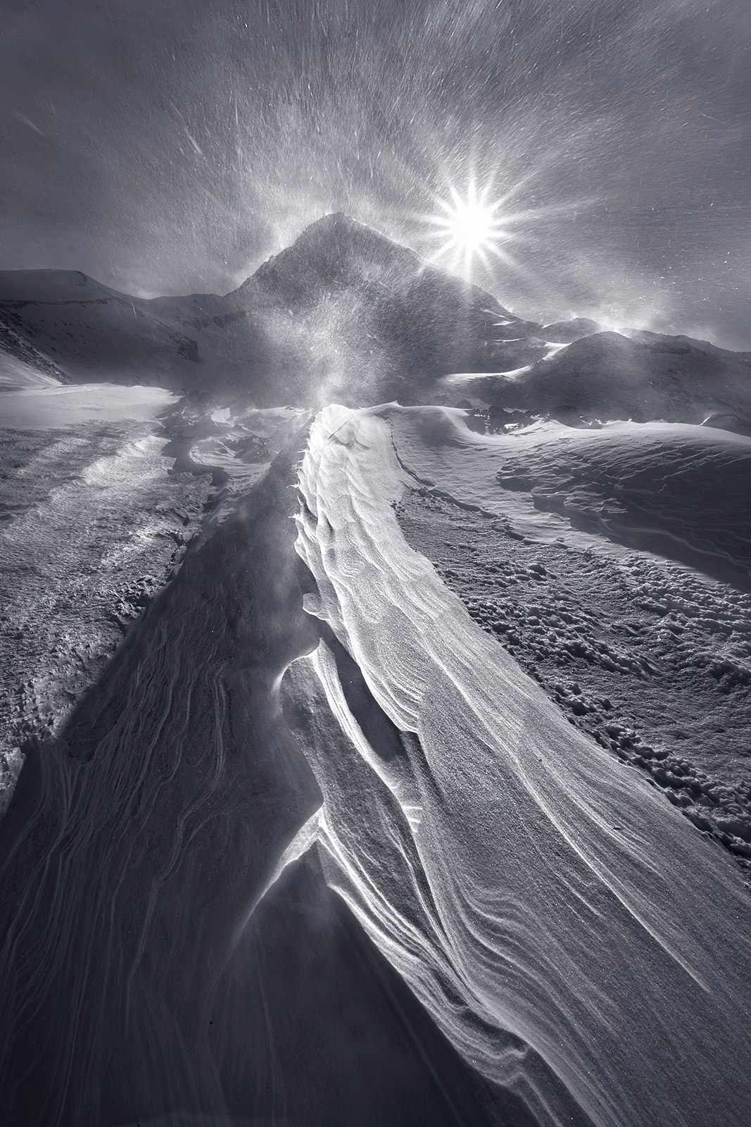 Winds, Snow, Oregon, Mount Hood, Winter, photo