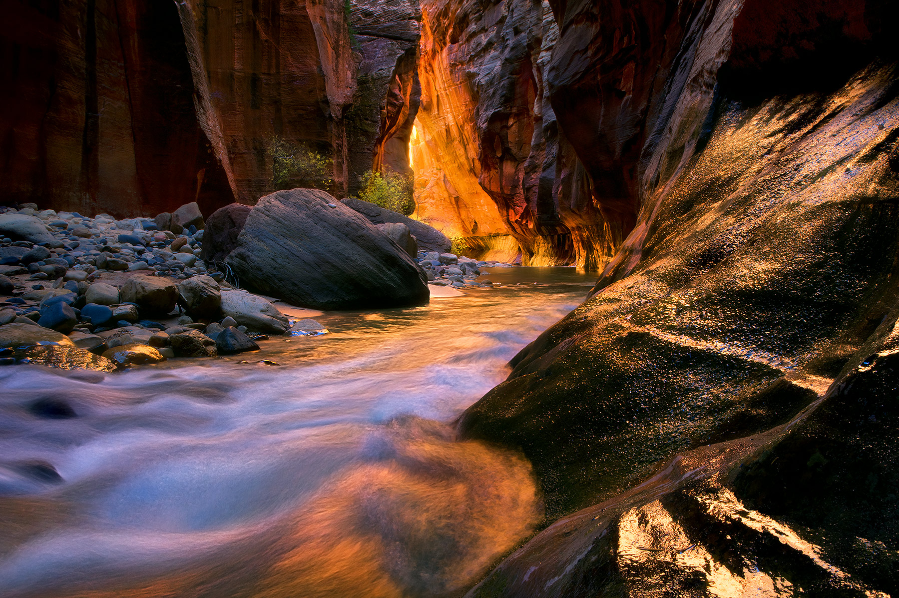 Rich, spectacular reflected light off the warm walls deep within the Narrows, in Zion. A much-photographed place, but one that...