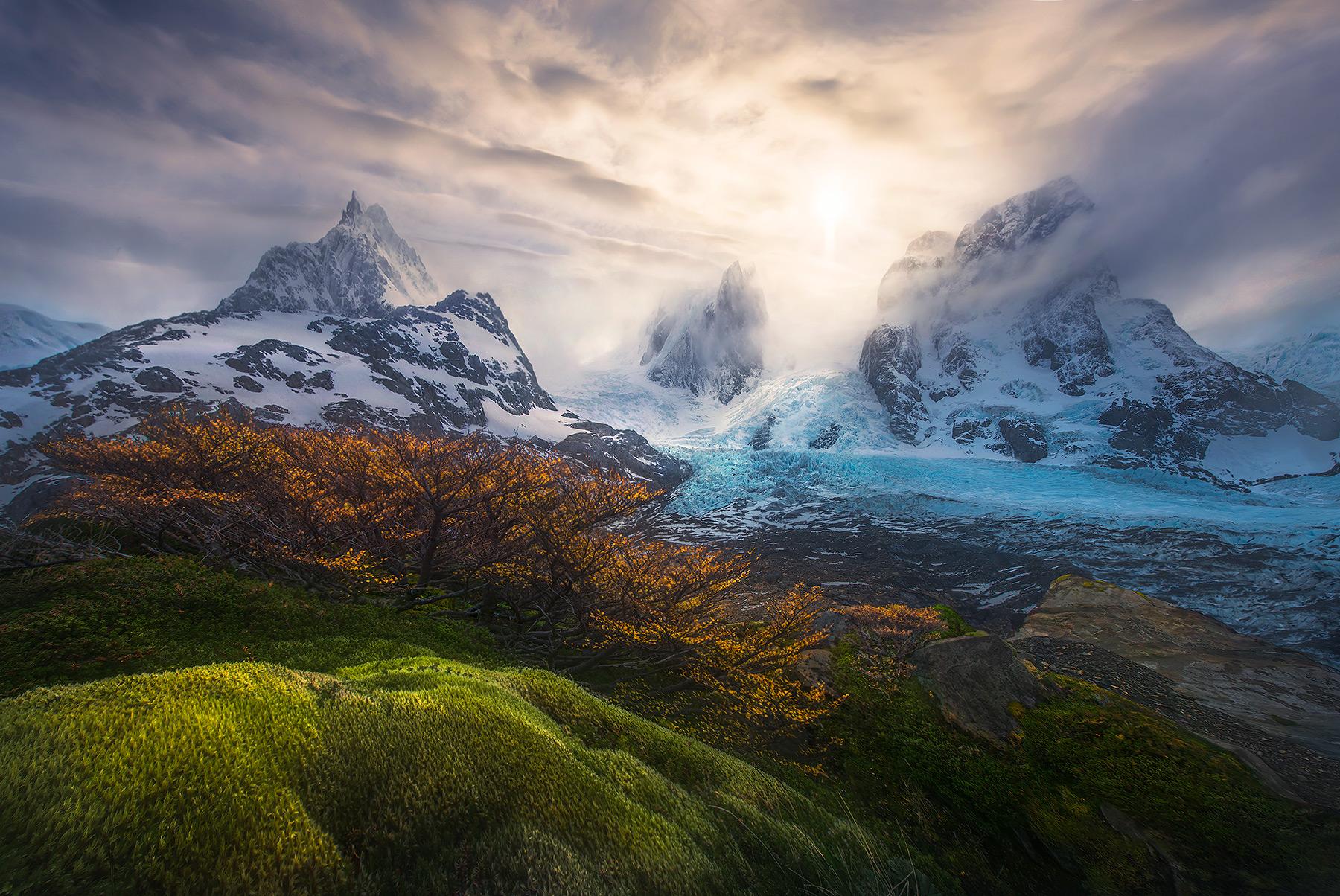 Moss, autumn, mountains, Chile, fiords, rainforest, Patagonia, glacier, photo
