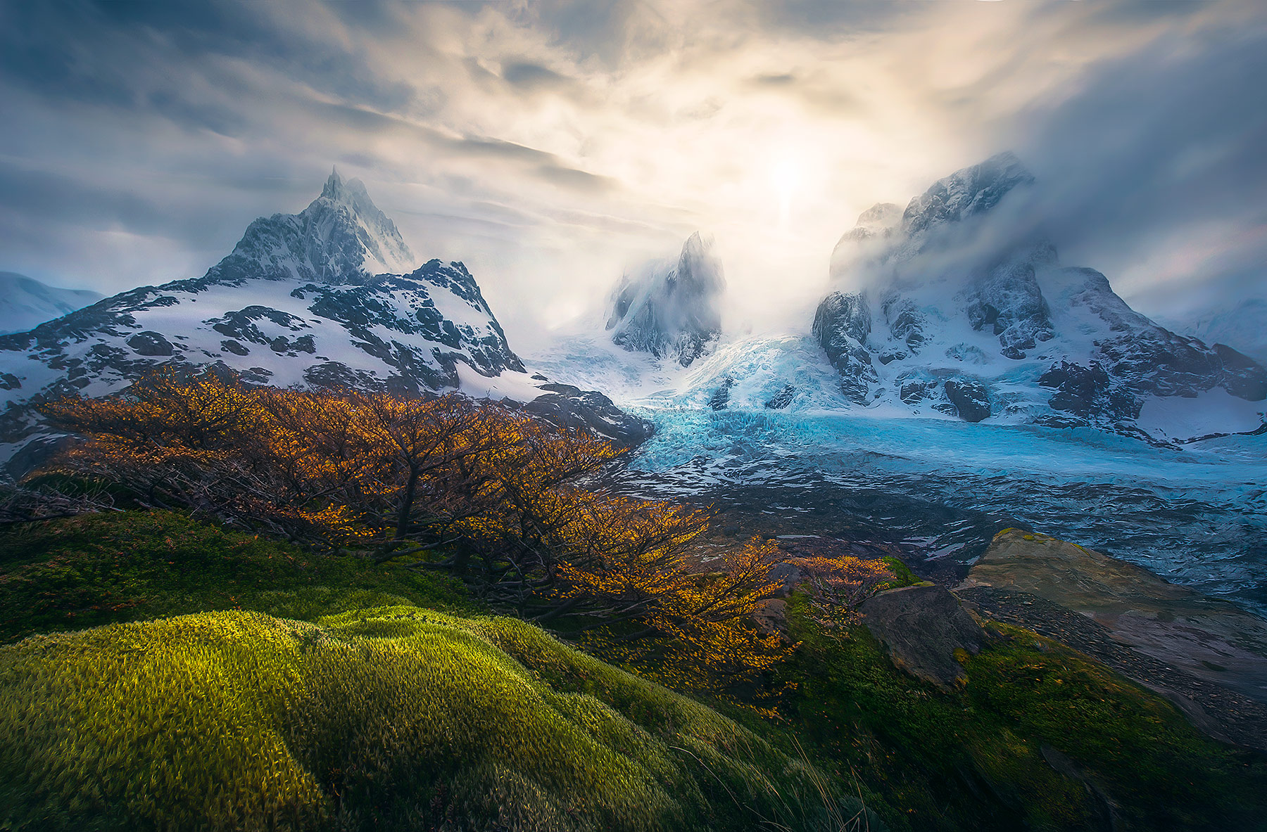 An amazing array of colors and textures adorn this alpine hillside in one of the world's most remote places, a fiord in southern...