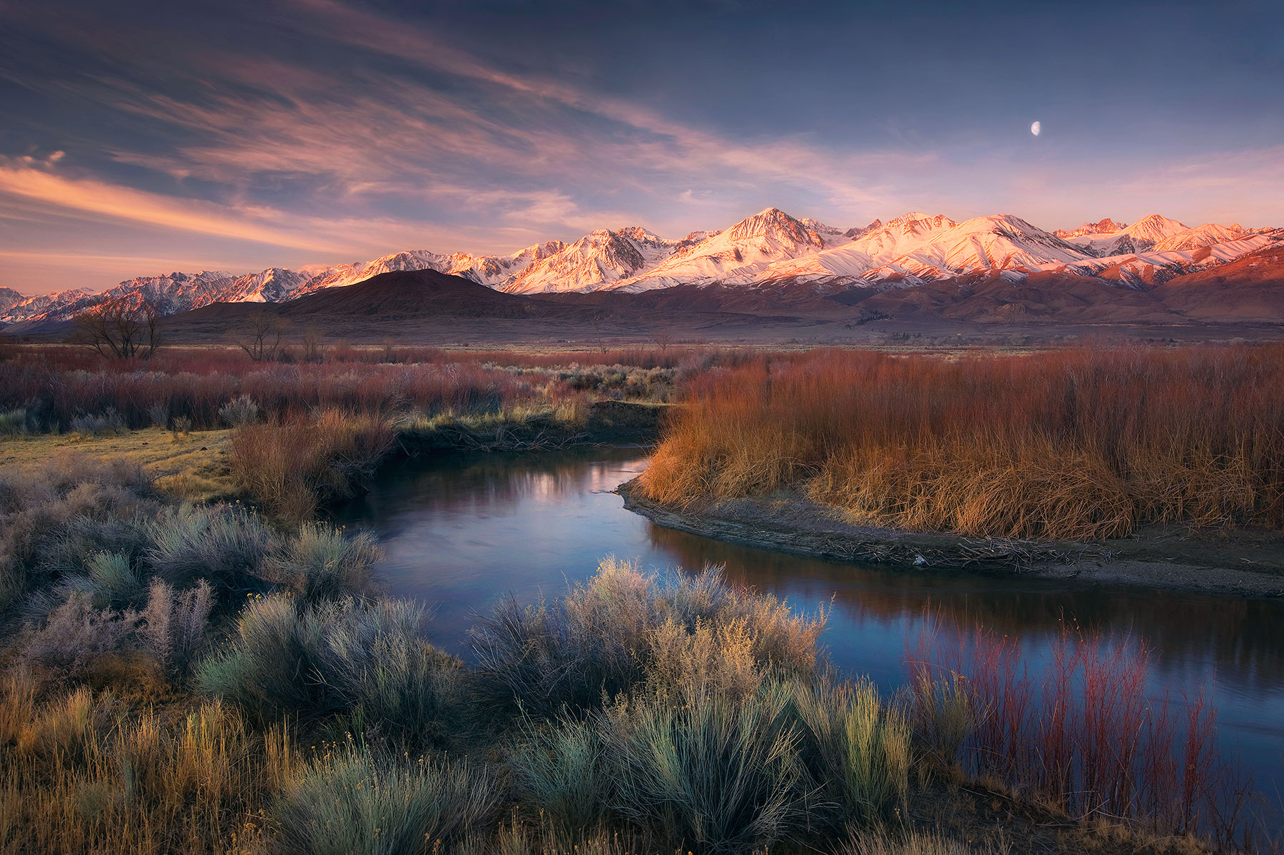 Moonset and sunrise from the banks of California's Owens River looking towards the Eastern Sierra.