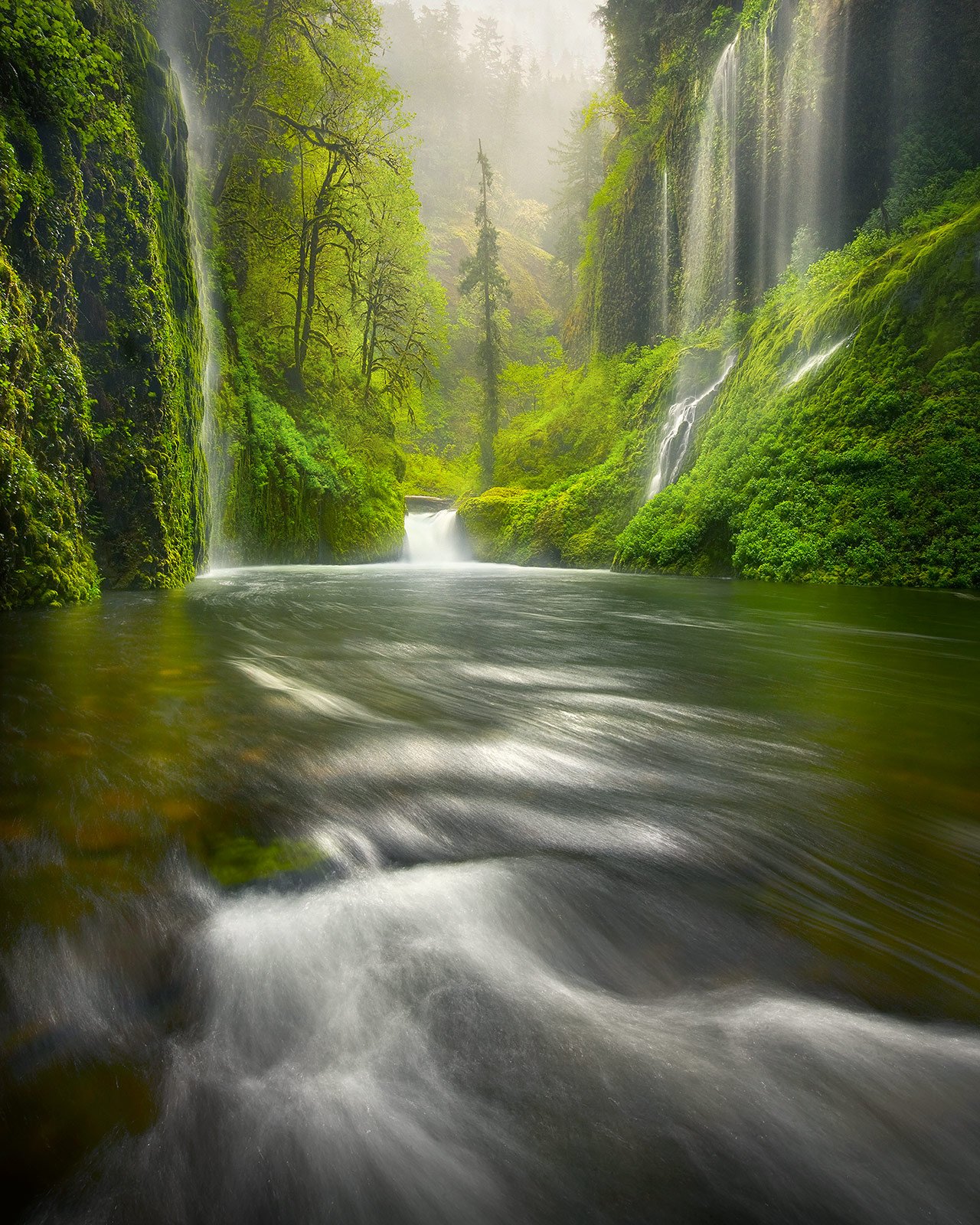 amazing, waterfalls, rainforest, lush, oregon, columbia gorge, rain, photo