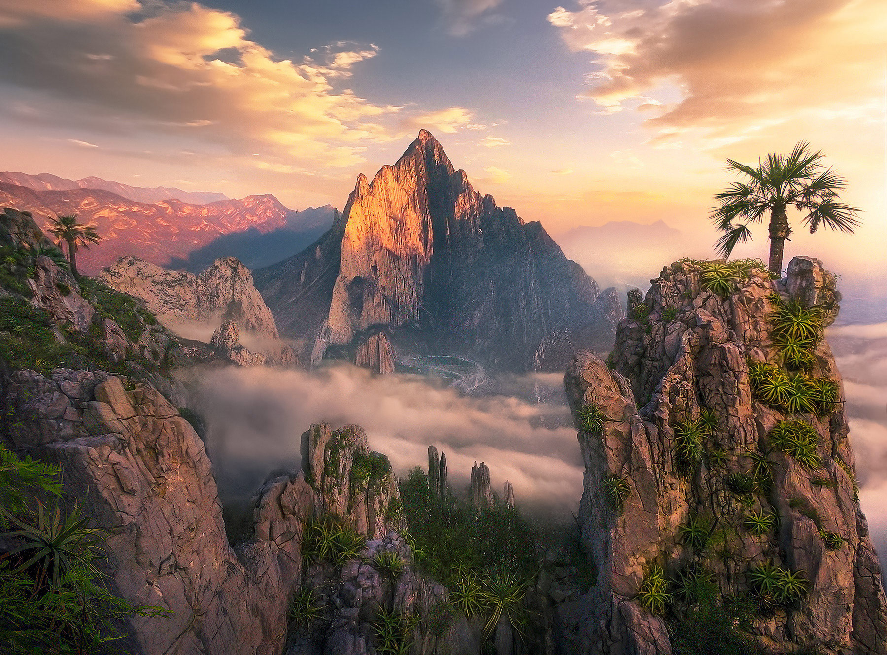 palm trees, Monterrey, peaks, jagged, cliffs, mountains, Mexico, sunrise