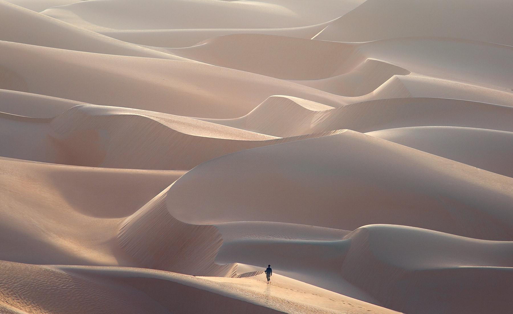 United Arab Emirates, Empty Quarter, dune, photo