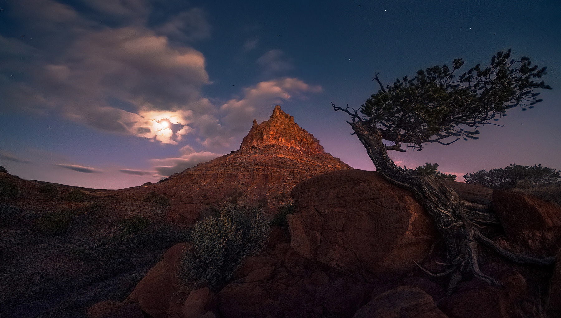 Moonset, Utah, tree, redrock, photo